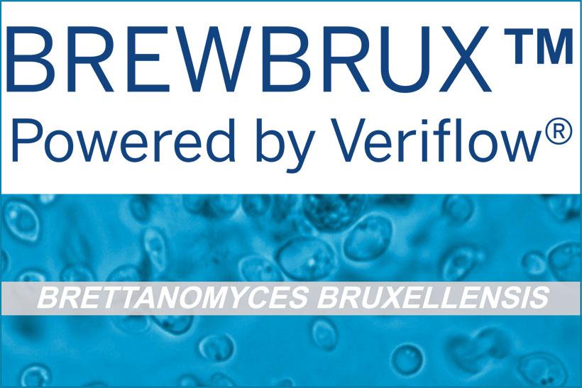 brewBRUX détection levure Brettanomyces bruxellensis