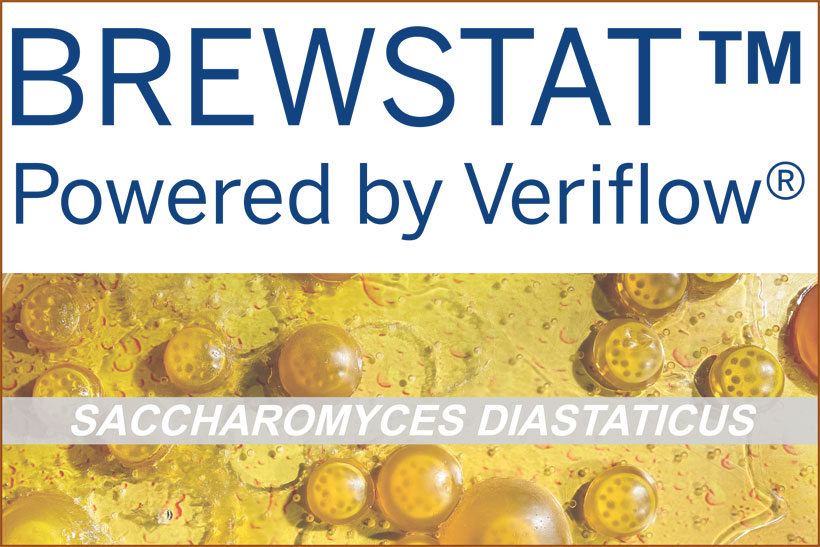 brewSTAT détection analyse des levures Saccharomyces var diastaticus
