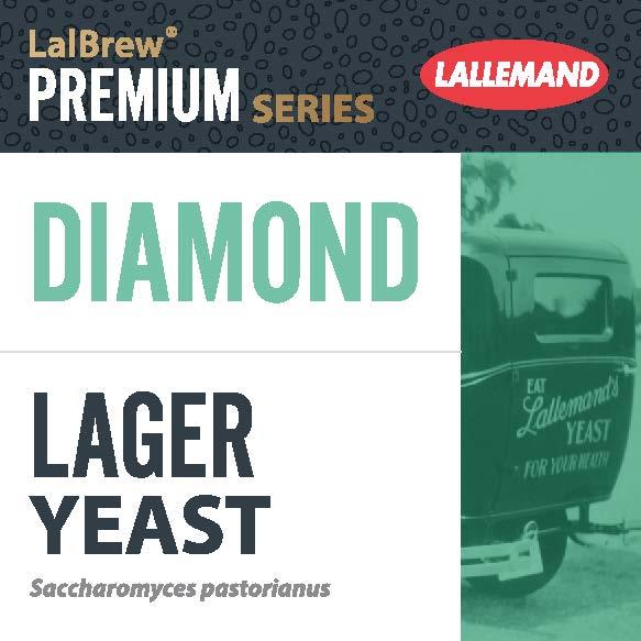 Diamond Lager Levure Bières Lager type allemande