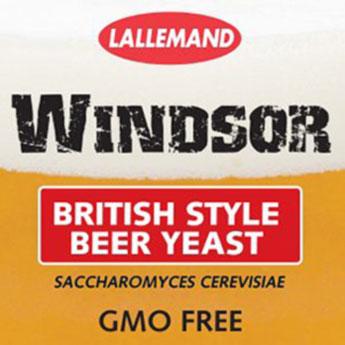 Windsor Levure de bières type anglaise